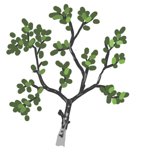Island_ShaderExample/3d_presentation/maps/branch.png